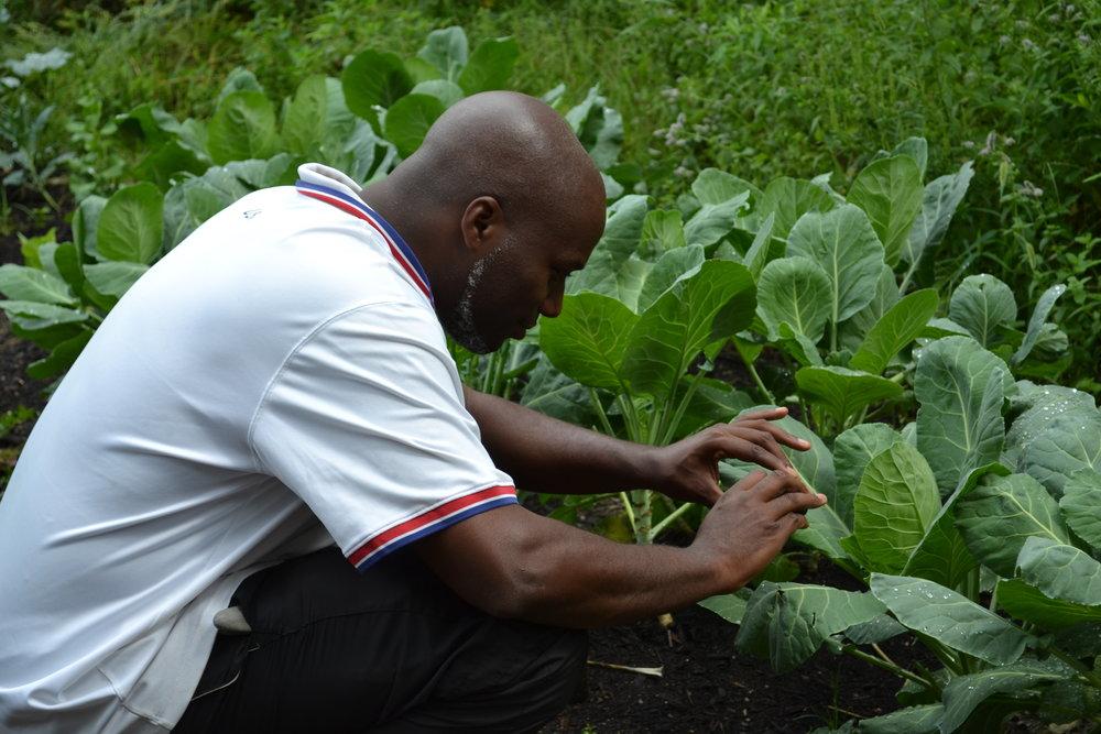 Ibrahim gardening GTC.JPG