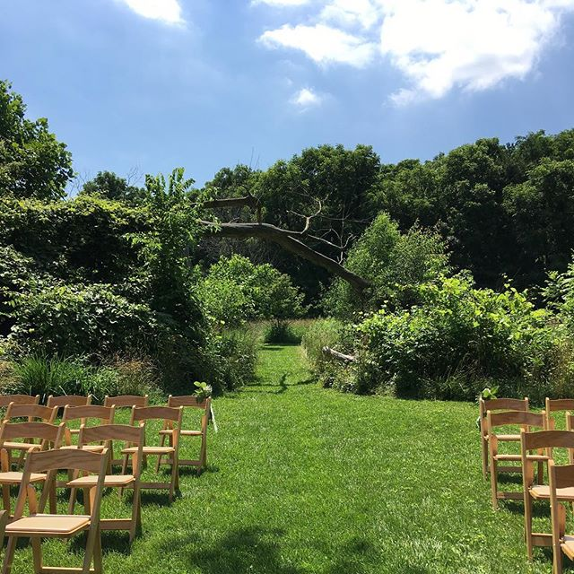 Looking out from our ceremony grove. What a great color contrast on this 🌞 summer day!