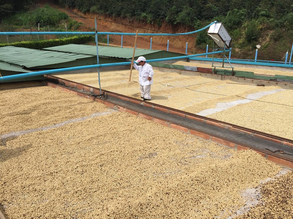 Rooftop drying at El Zafira