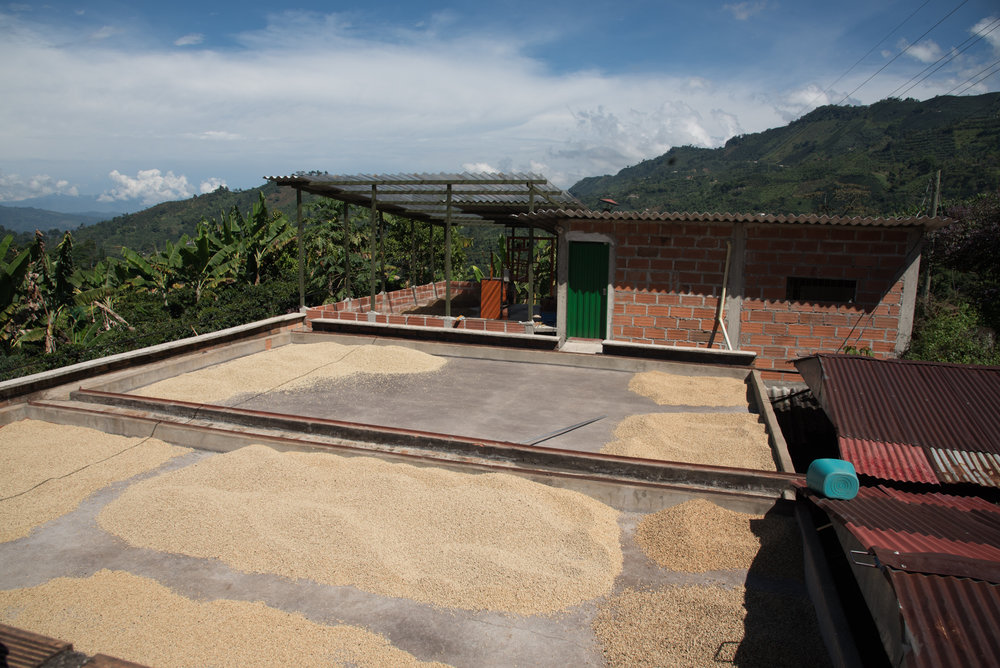 Colombia_Part_1_Photography_By_Katie_Alexis-1490.jpg