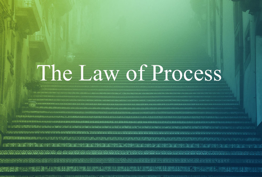 The-Law-of-Process-FI.jpg