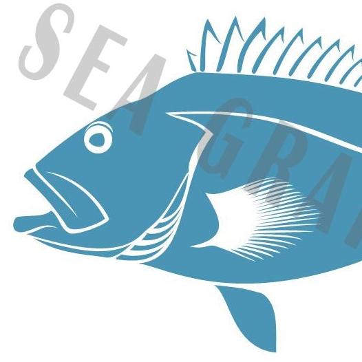 yelloweyerockfish_EK_WM.jpg