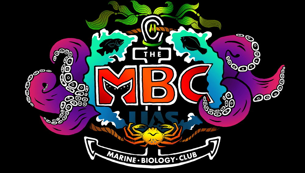 MBC Logo 2013_2.jpg