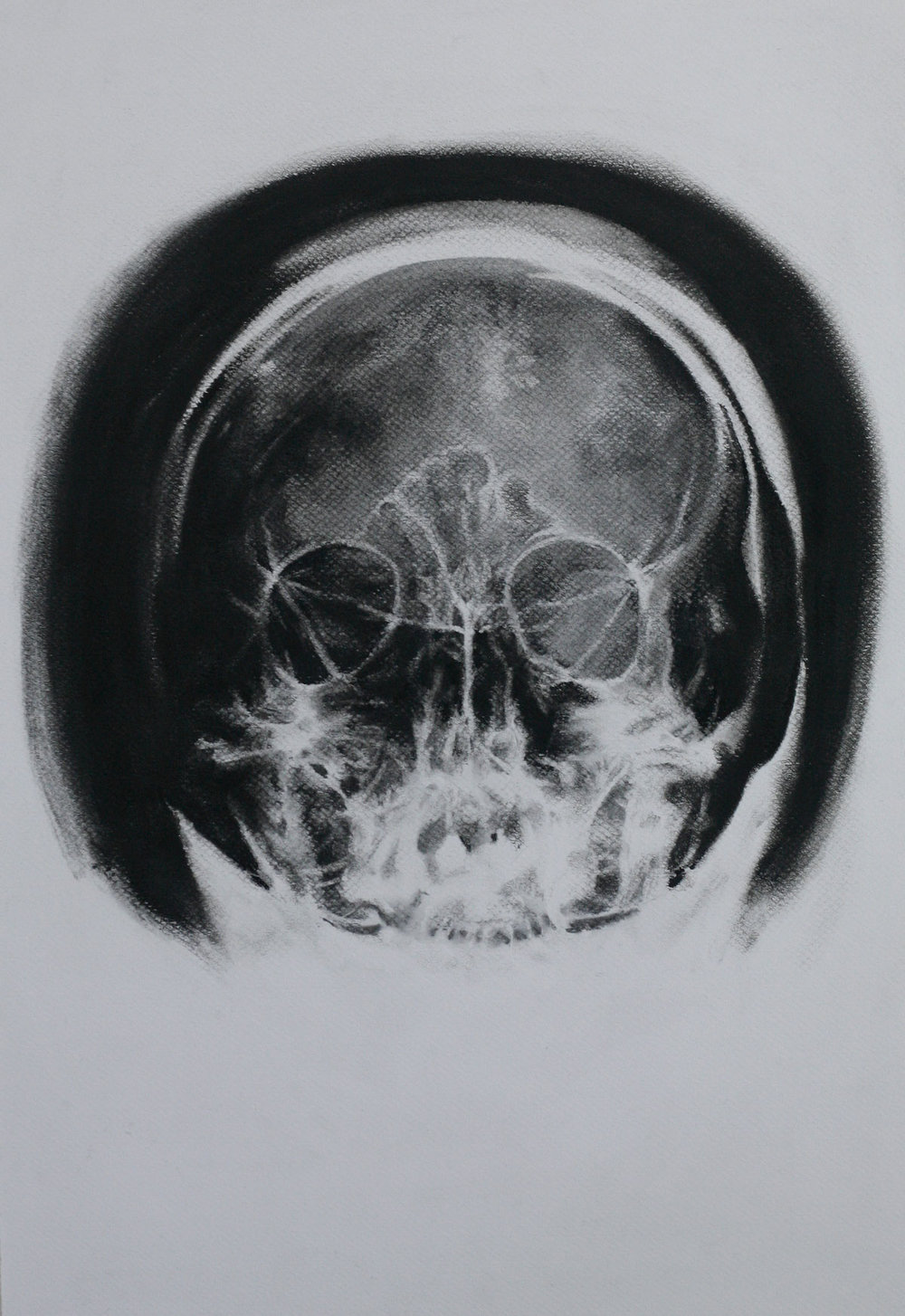 Mind and Specimen (Study no. 7)