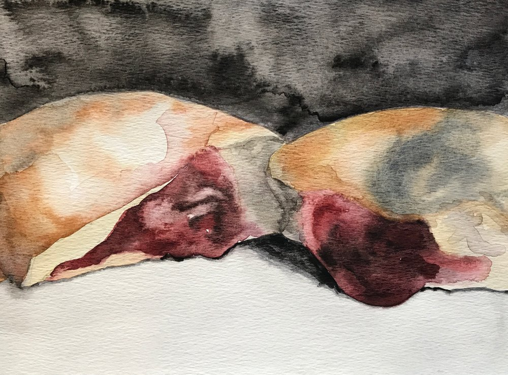 """5""""x7""""  watercolor on paper"""