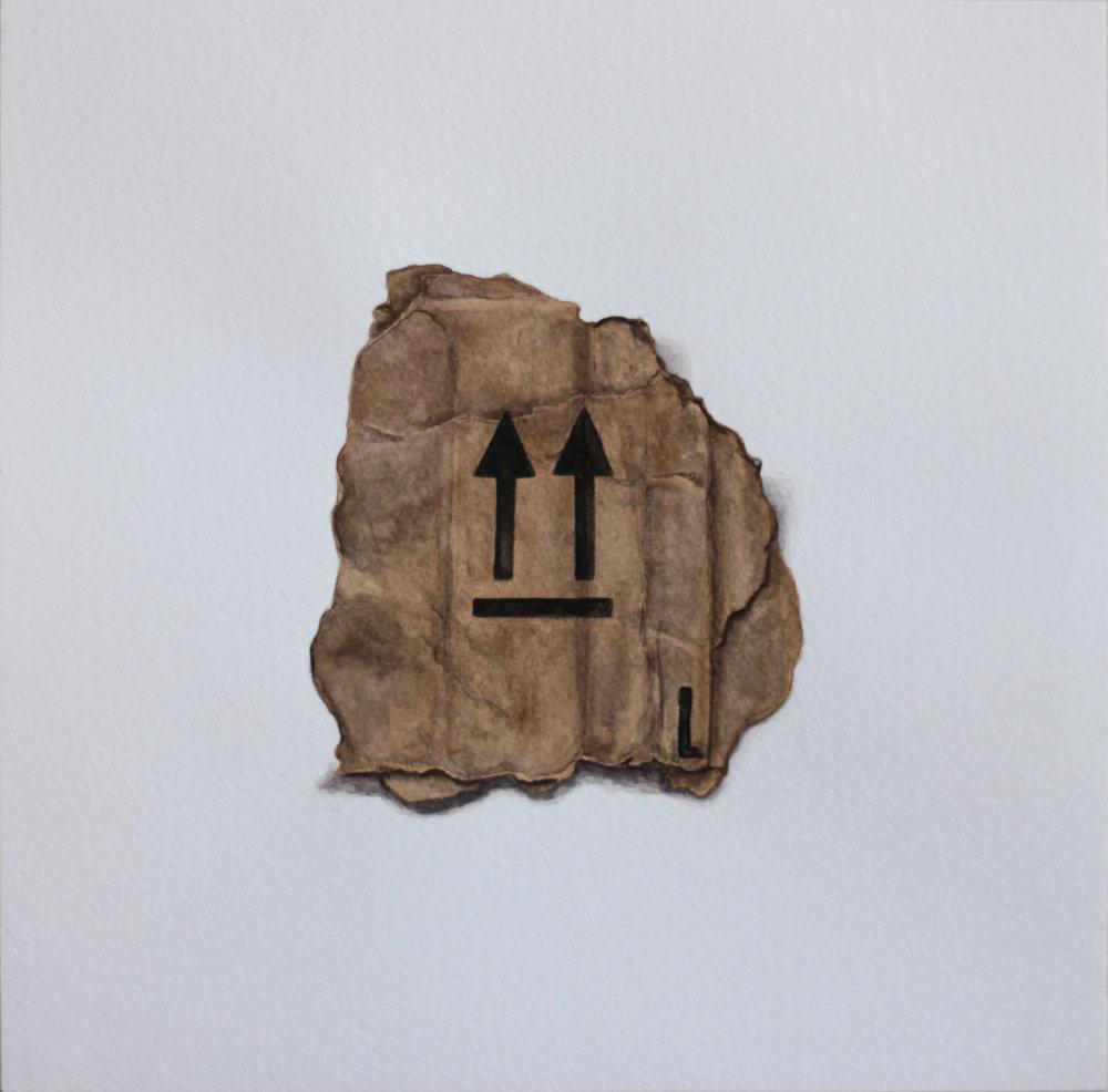 """portrait of arrows on cardboard  8""""x8""""  watercolor on paper"""