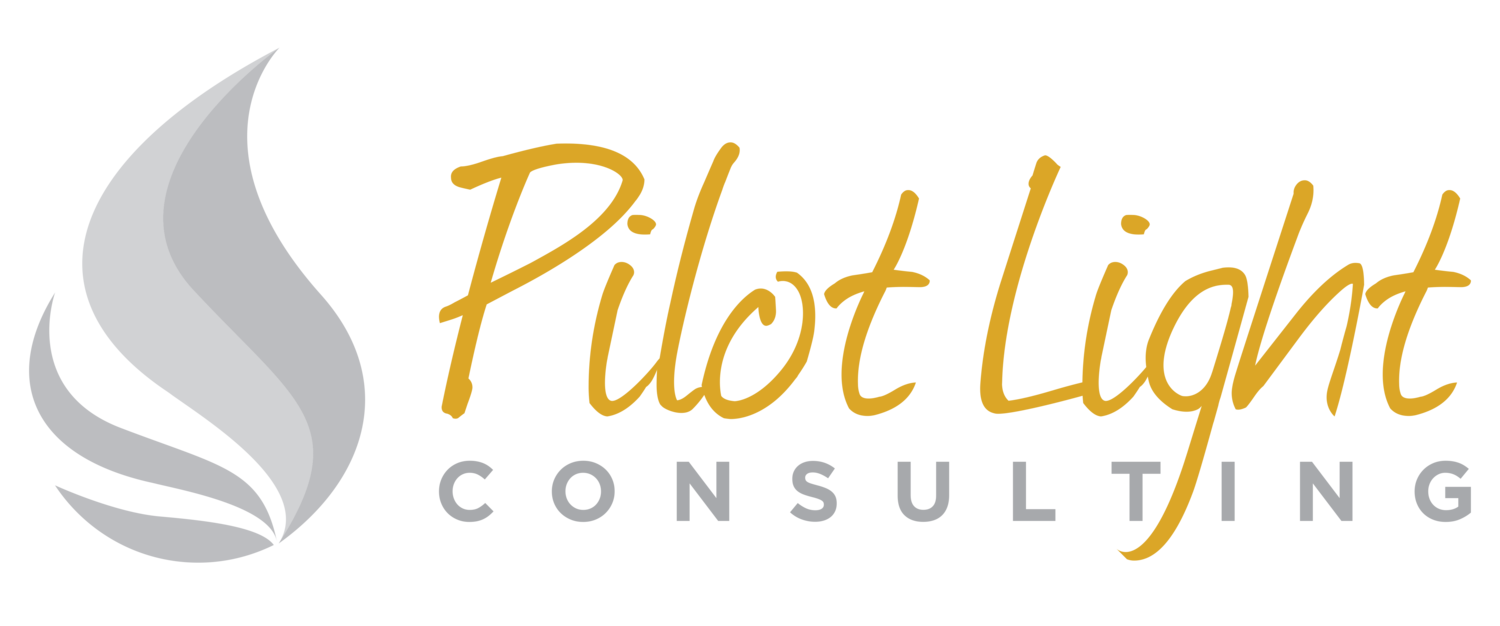 Pilot Light Consulting