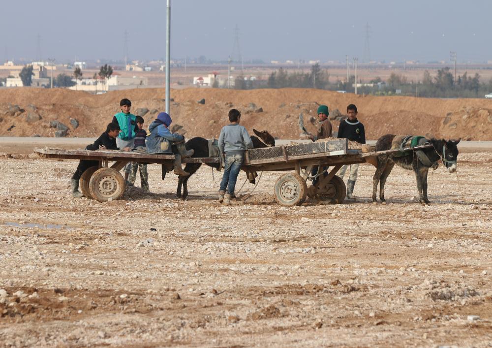 Children and donkeys work in Zaatari
