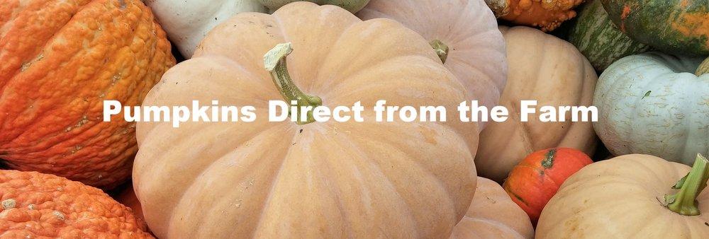 pumpkin-1686366_1920.jpg