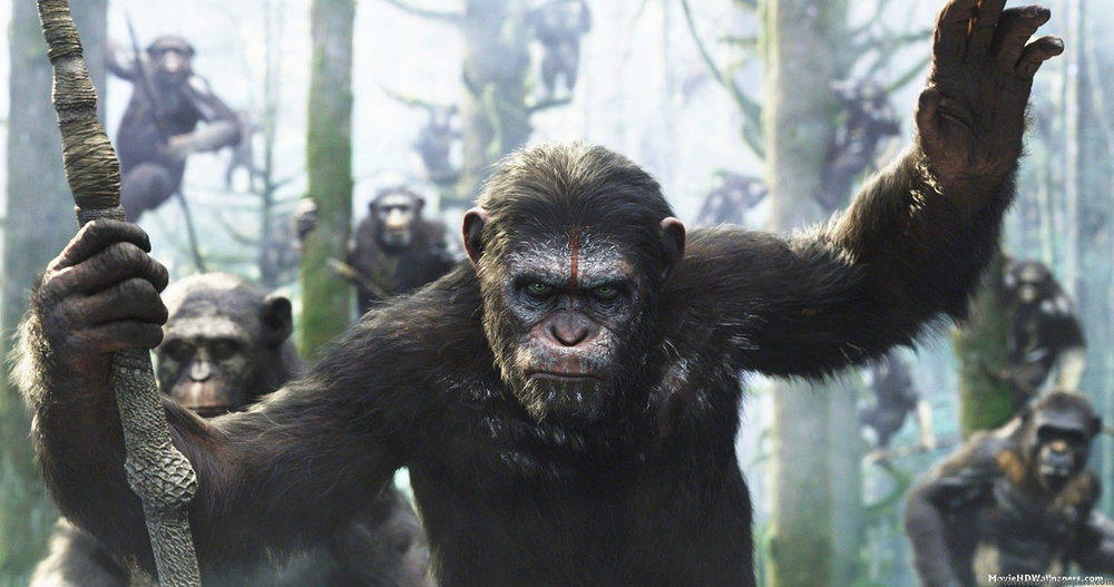 from: https://hqmoviereviews.wordpress.com/tag/dawn-of-the-planet-of-the-apes/.