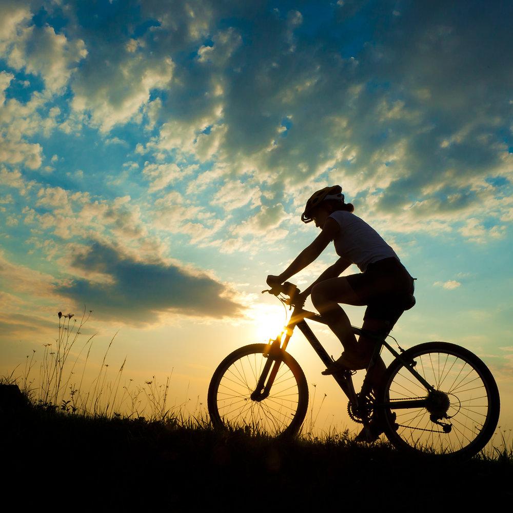 bike-silo-shutterstock_120651499.jpg