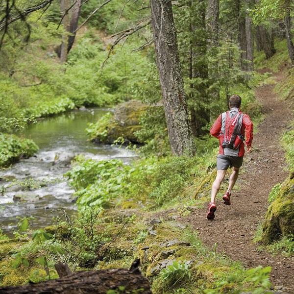 Trail-run-through-the-forrest.jpg