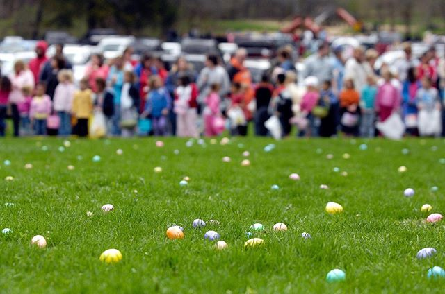 🌷It's that time of year again!🌷⠀ ⠀ 🐰Time to grab your baskets and hop on over to one of the many Easter events happening around Silicon Valley➡️⠀ ⠀ 🔗Link in bio: Silicon Valley Easter Events➡️