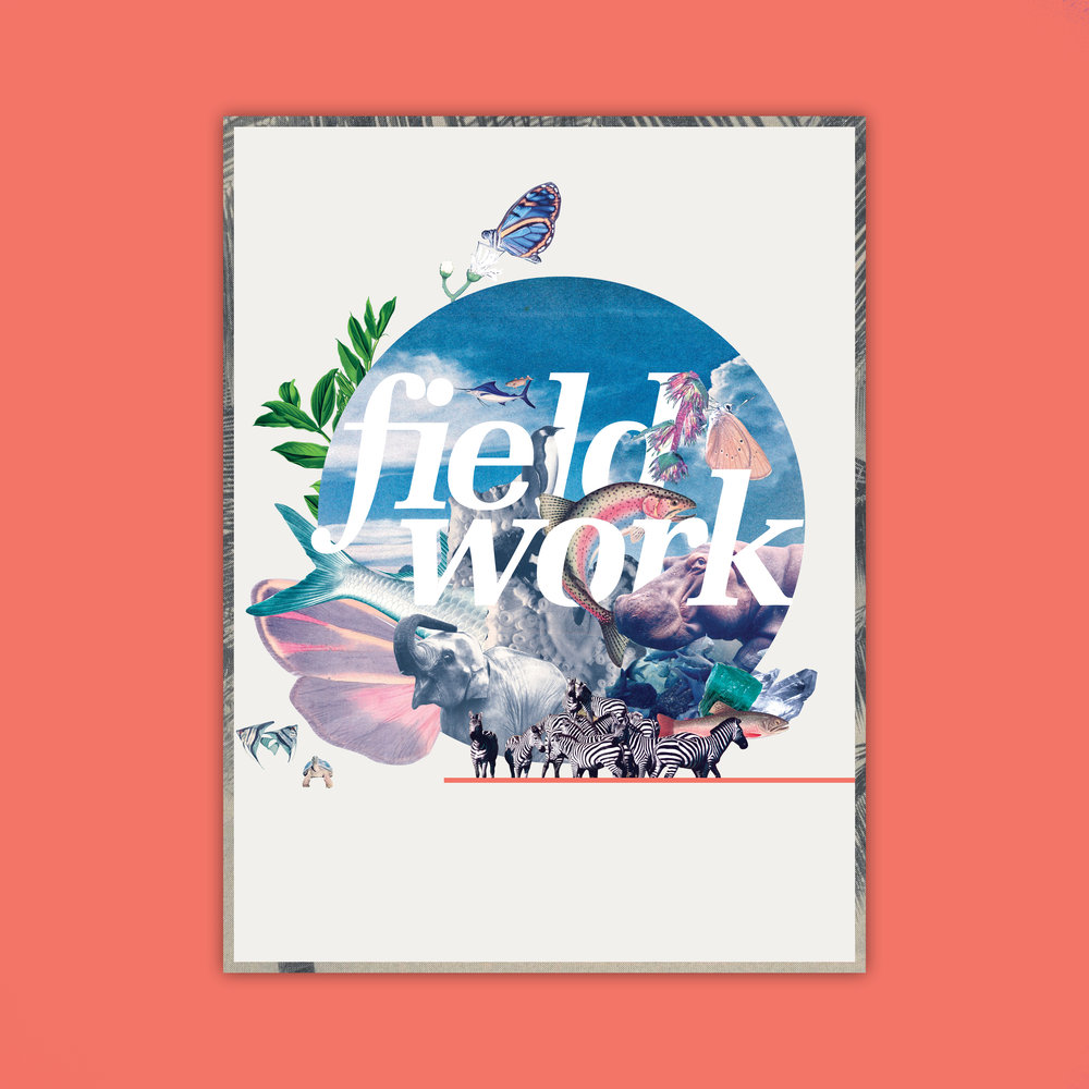 fieldworks_cover.jpg