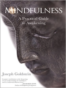 With Mindfulness, Joseph Goldstein shares the wisdom of his four decades of teaching and practice in a book that will serve as a lifelong companion for anyone committed to mindful living and the realization of inner freedom.
