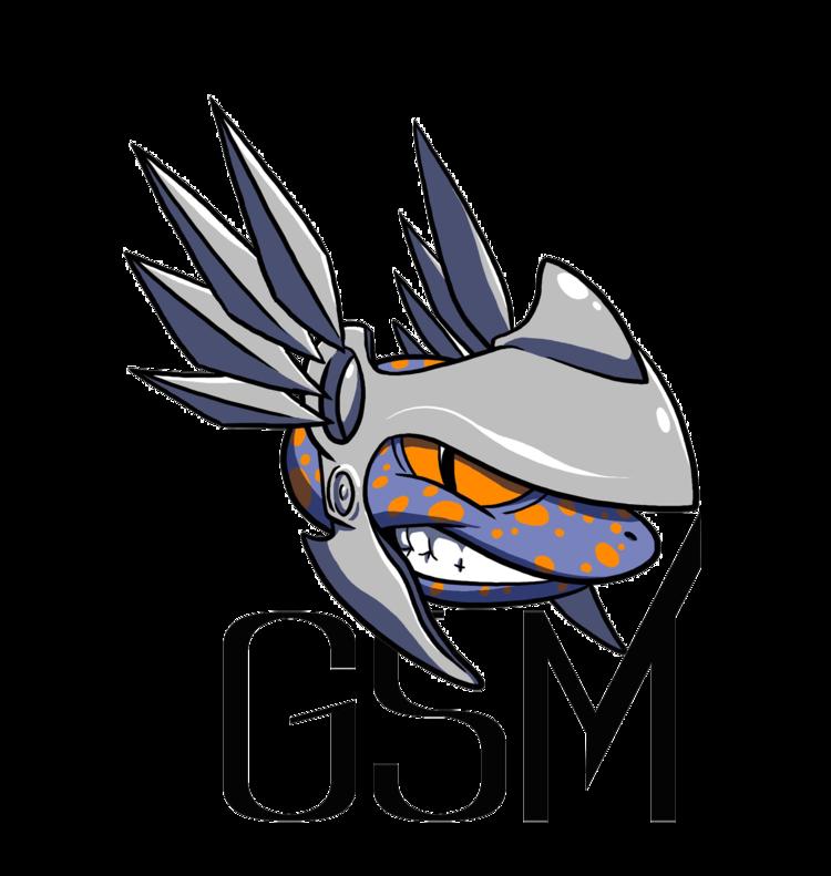 gsm.png