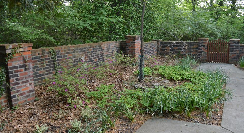 In the beginning the garden was a bit sad and neglected, but it held so much potential. Some great plants were already in place, benches, a new walk and of course, the brick wall.