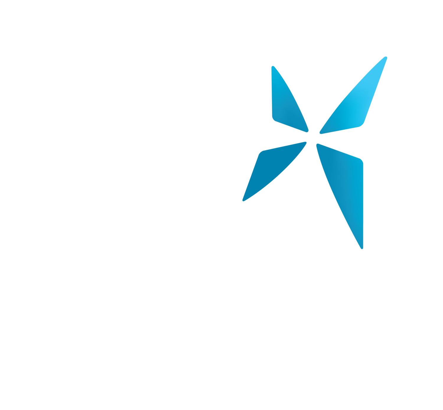 City Dream Centre