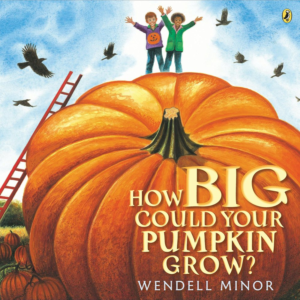 How Big Can your pumpkin grow.jpg