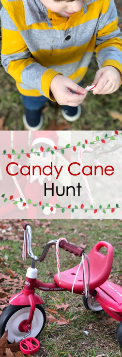 Candy Cane Hunt Image.png