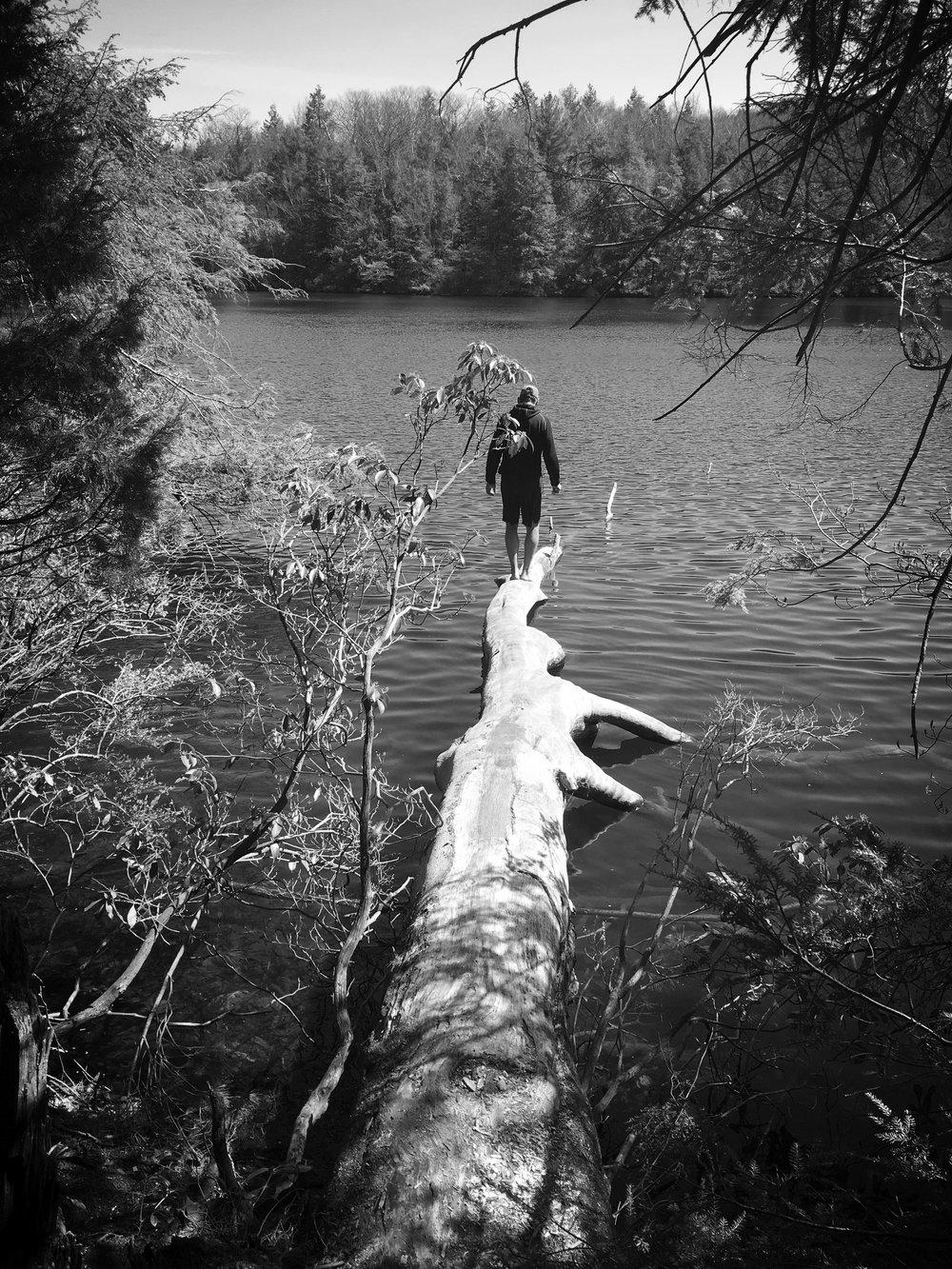 barefoot log.jpg