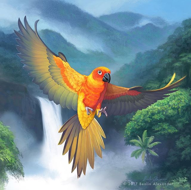 This was an incredible opportunity to create packaging illustrations for a bird seed manufacturer in Australia. Depicted is a Sun Conure flying over a South American rainforest. I'm not sure if these products are in American stores but I'm hoping to run into these one day! Let me know if you do! Prints are available upon request. View more on my website. . . . #illustration #coverart #packaging #artistoninstagram #art #instaart #painting #digitalpainting #mixedmedia #digitalart #wildlife #rainforest #nature #ornithology #birds #ithacany #upstateny #NY #NYC