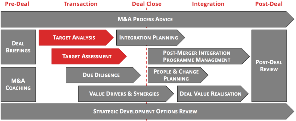 Target analysis and assessment is a key element of the early phase of an M&A Deal