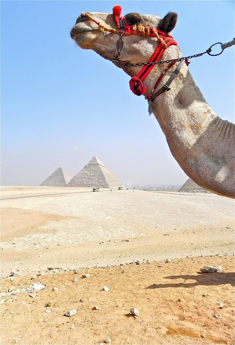 Cairo, Egypt.jpg