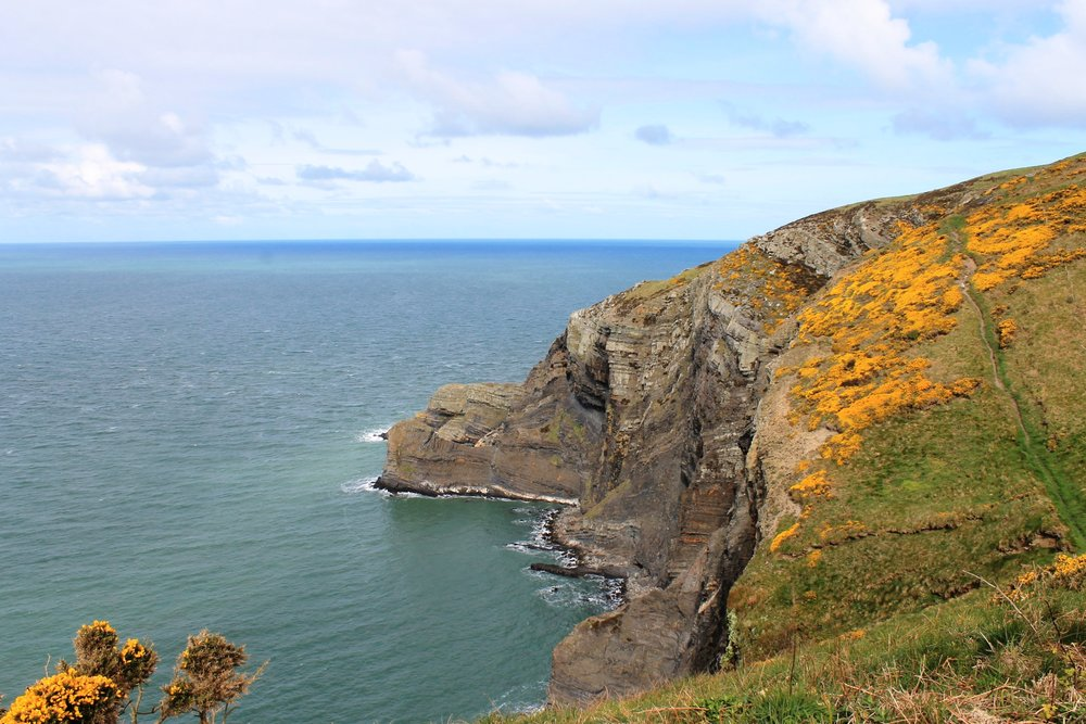 View from the Pembrokeshire Coast Path near St Dogmael's