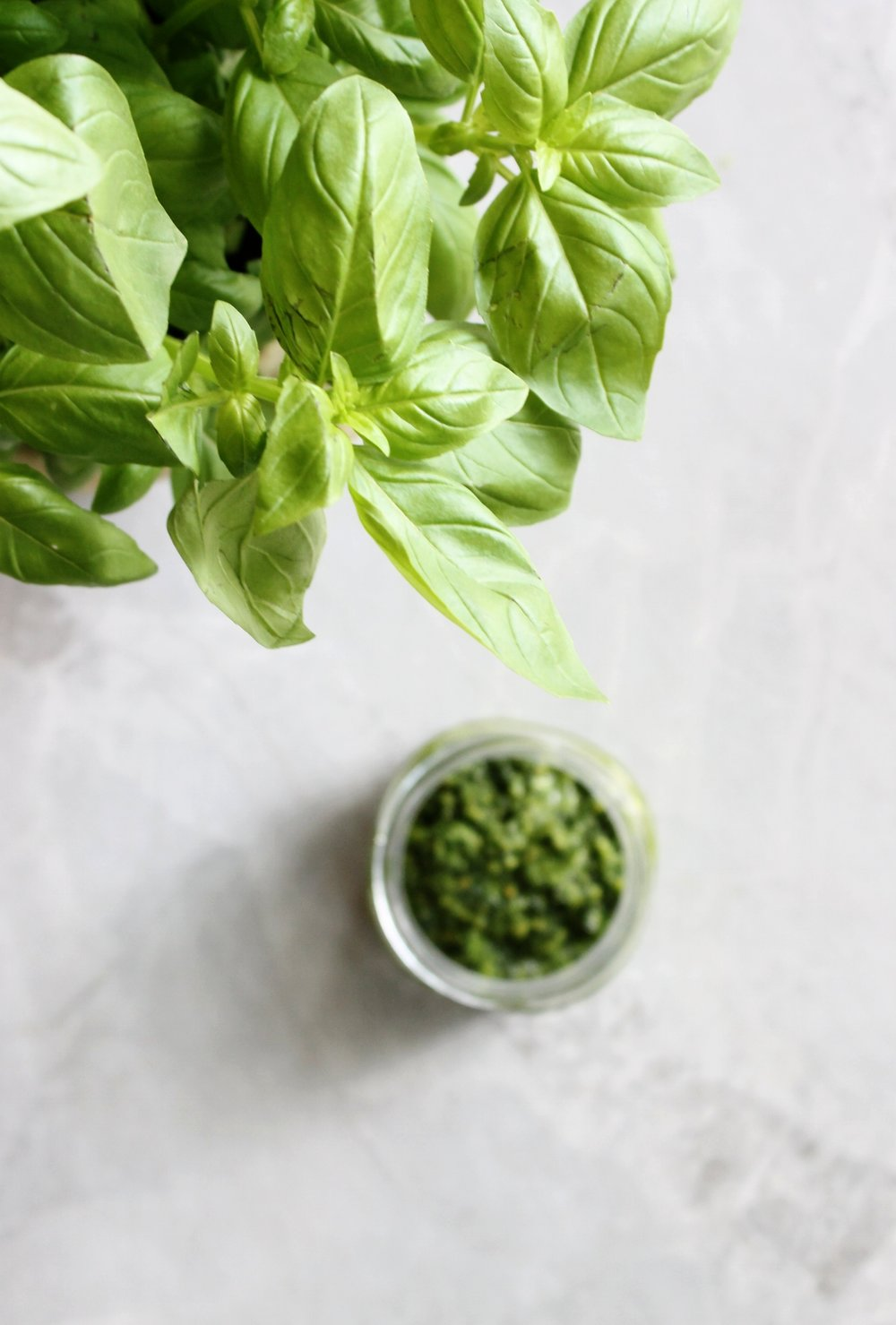 Greener pesto | Beloved Kitchen