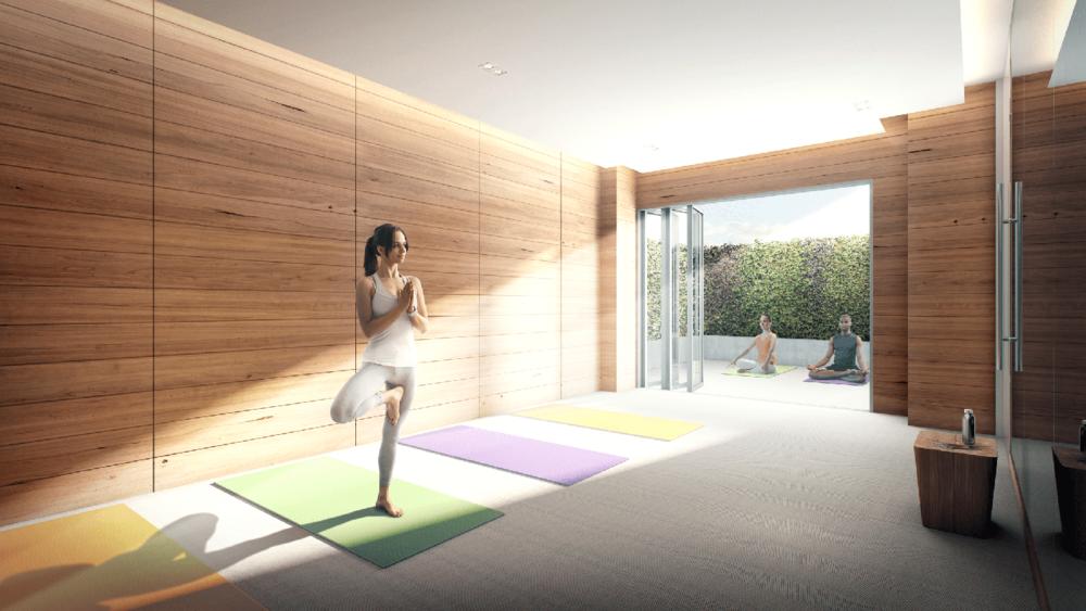Condovo - Vanguard - Yoga.png