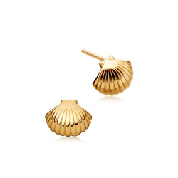 Astley-Clarke-Mini-Shell-Biography-Stud-Earrings-Yellow-Gold-Vermeil-39005YNOE.jpg