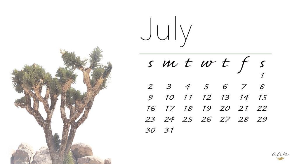 calendar_joshua tree_JULY_edited-1.jpg