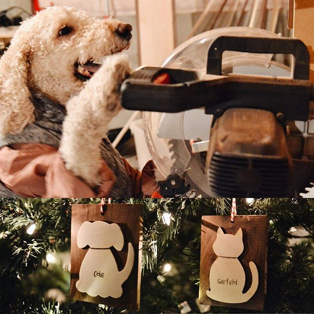 Odie keeps working his power tools like the carpenter he is. We've raised over $2,500 for rescues in almost every state in the US and are excited to keep the momentum going! Pick up an ornament or two at our profile link and $5 for each one will go back to a rescue of your choice! 🐾🐶 . . #odieandboard
