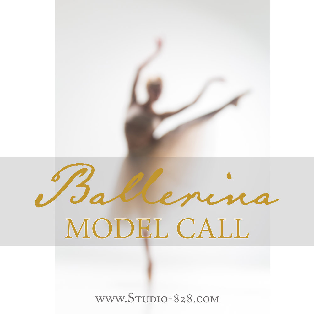 ballerina - asheville - dance - ballet - model call - special offer