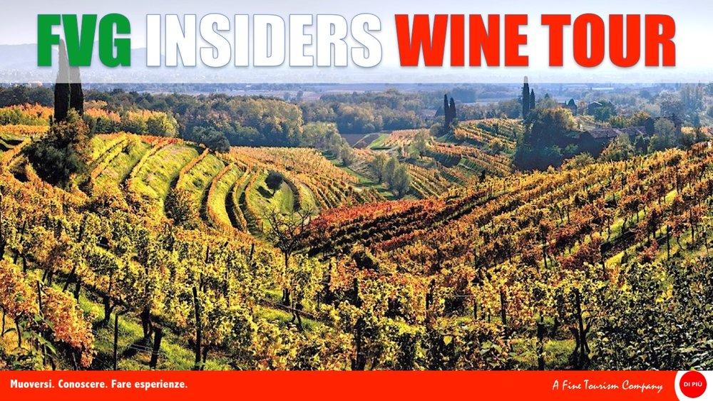 Scarica il booklet - Include le schede di tutti i vini proposti