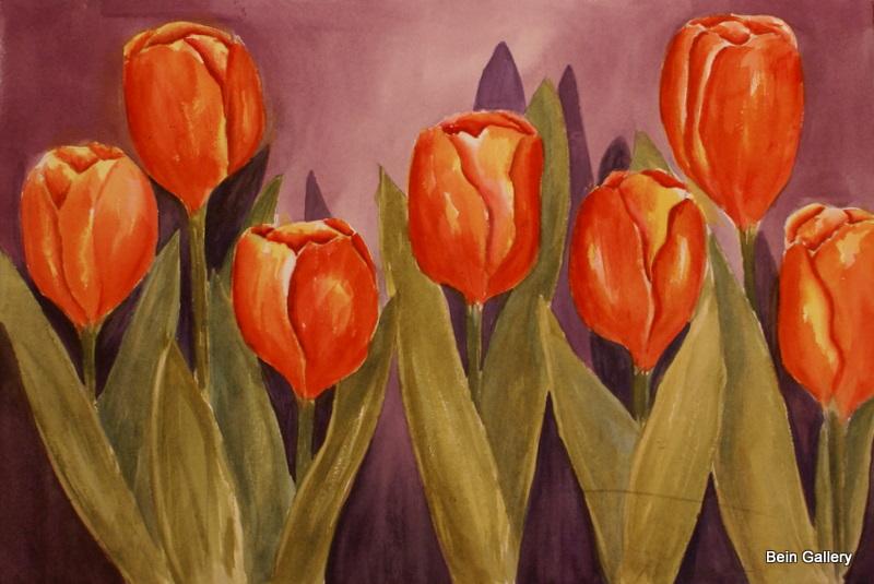 #356 Tulips.JPG