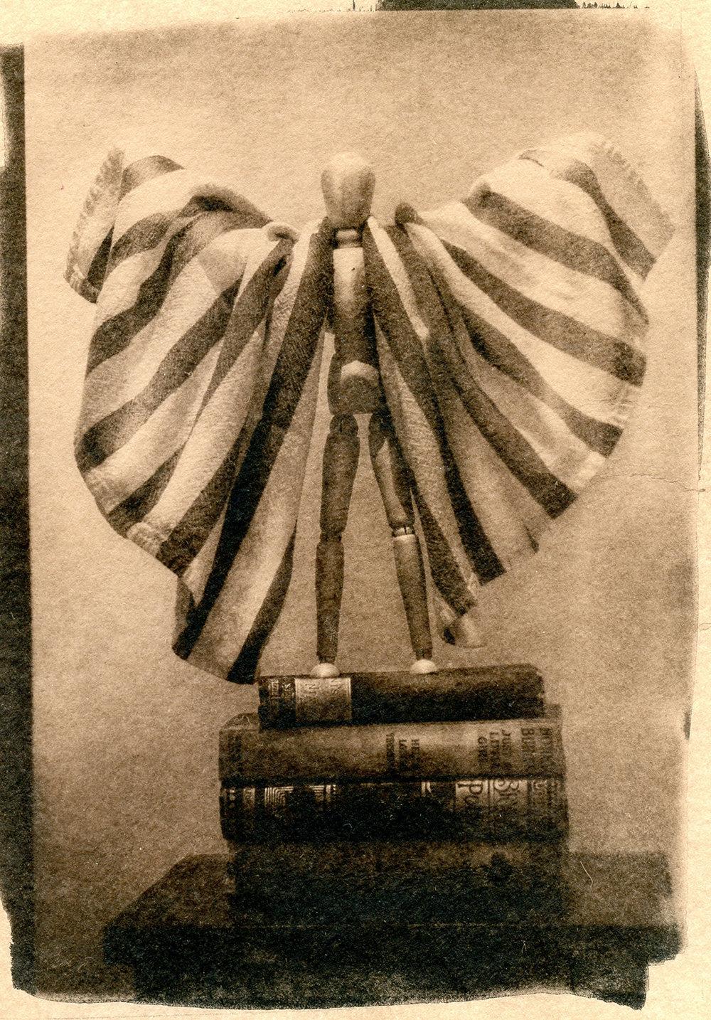 Wings068.jpg