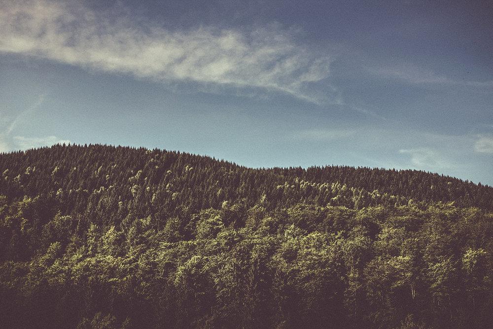 Viewfinder Harz UNESCO Welterbe Backstage - Multimedia Reportage - @UNESCO Welterbe im Harz 12 Monate / 12 Geschichten • Bloghomepage • Facebook • Instagram  • Fotografie • Video • Redaktion • Drone + Panorama Medienpartner: Harzkurier, Harz Tourismus Online