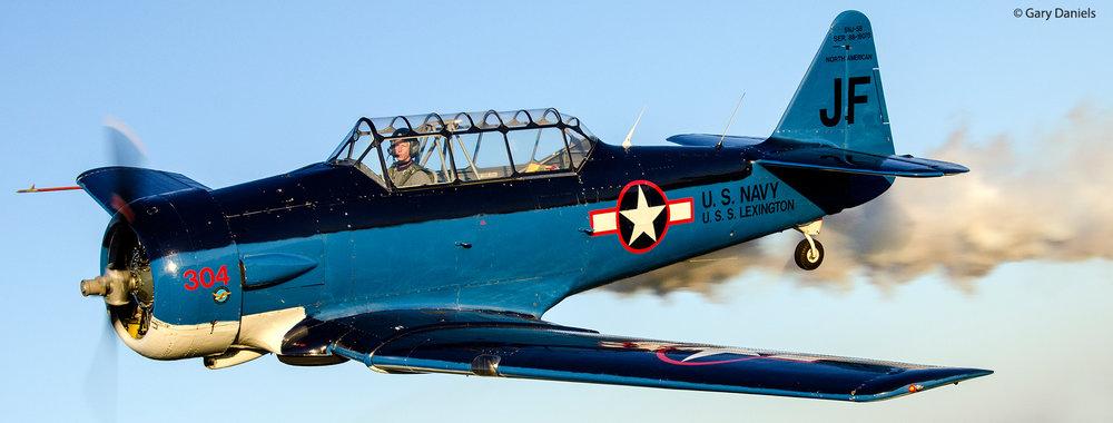 Steve Afeman: SNJ Texan, WWII Warbird