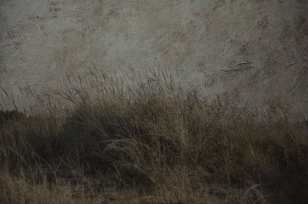"""""""Duna de Cádiz / Cadiz dune"""""""