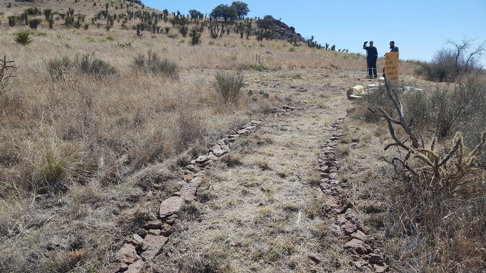 Eilis built a path from where the vineyard will be up to where the tent will be. Little by little things are starting to transform.