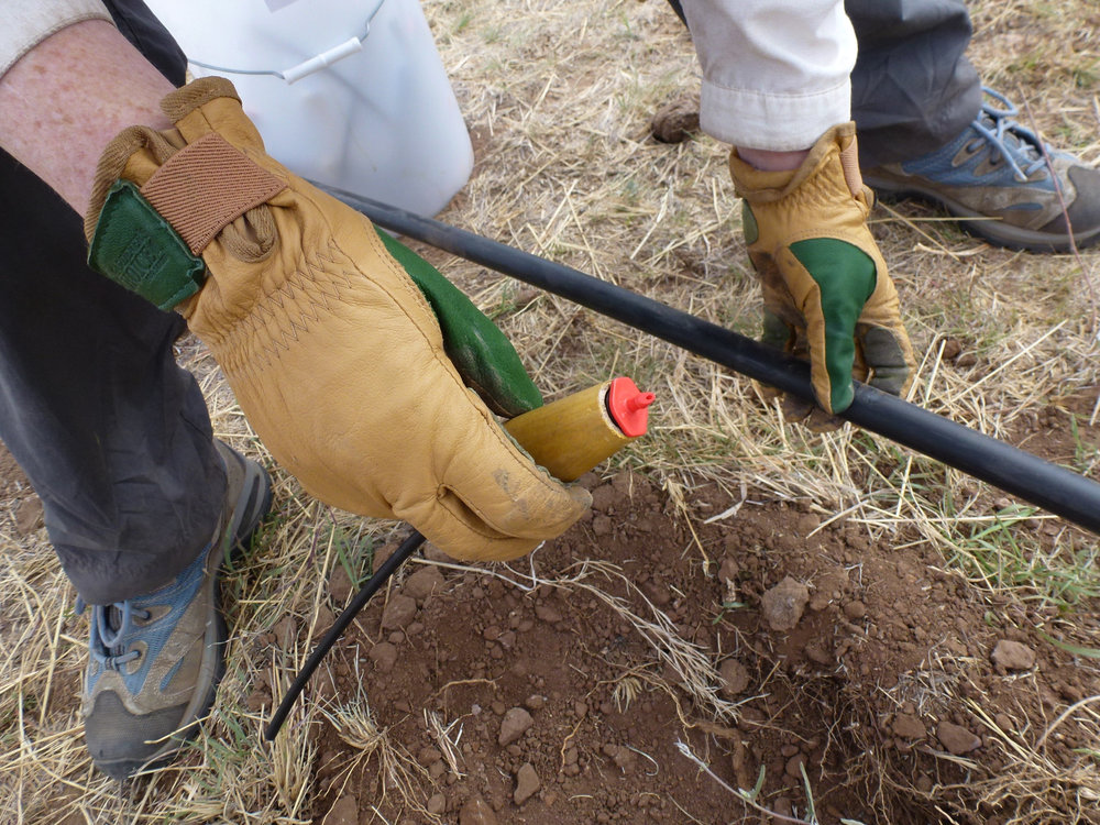 Here is a homemade tool we built to help snap the drip emitters into the drip line.