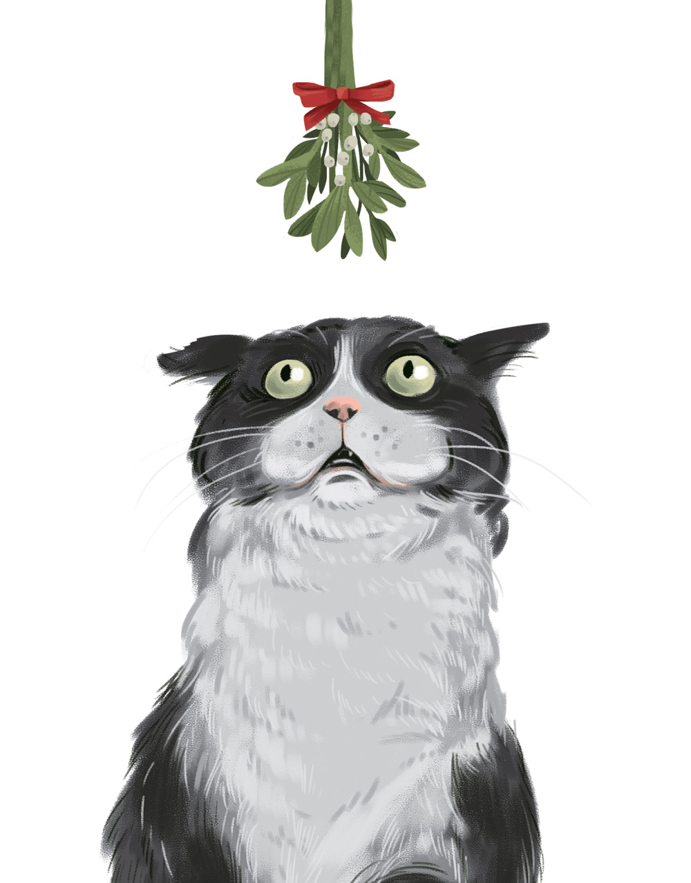 Cat-Mistletoe.jpg
