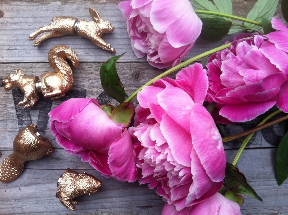 Magnets+flowers.jpg