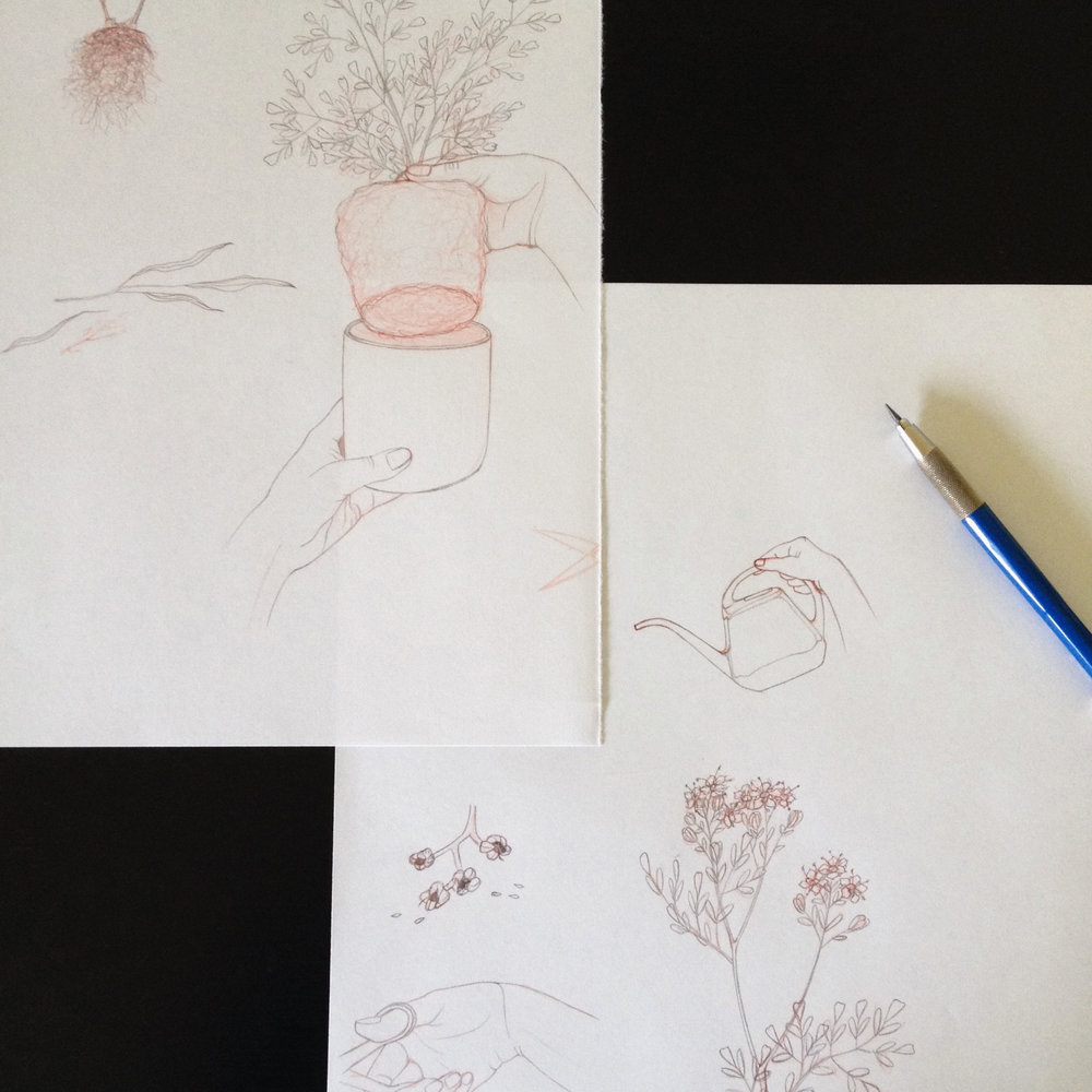 sketching square.jpg
