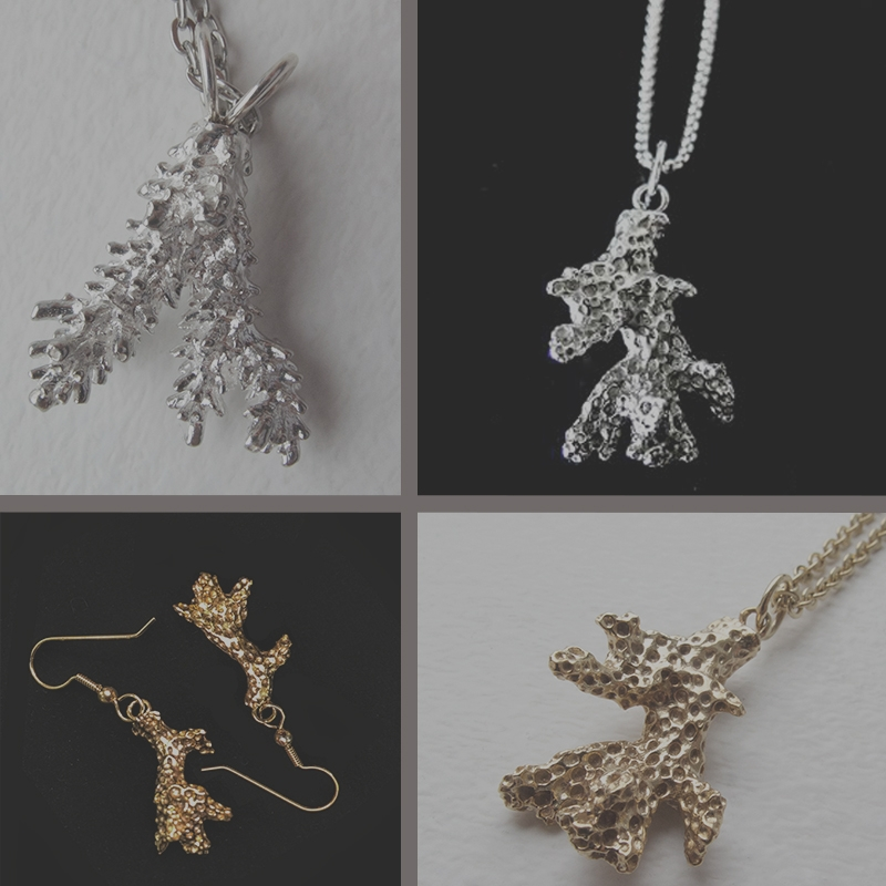 Collection -