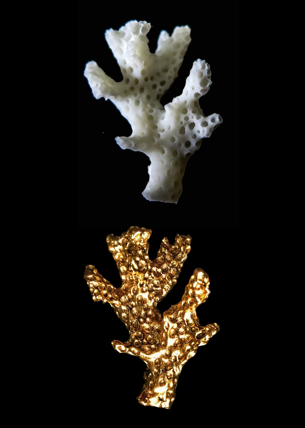 REPLICATE - Using our proprietary production techniques we can replicate coral specimens from your aquarium and work with you to design of a kind pieces. Creating custom pieces in this way directly connects your aquarium to positive environmental impact. The coral you nurture at home will help grow coral and rebuild reefs around the world.