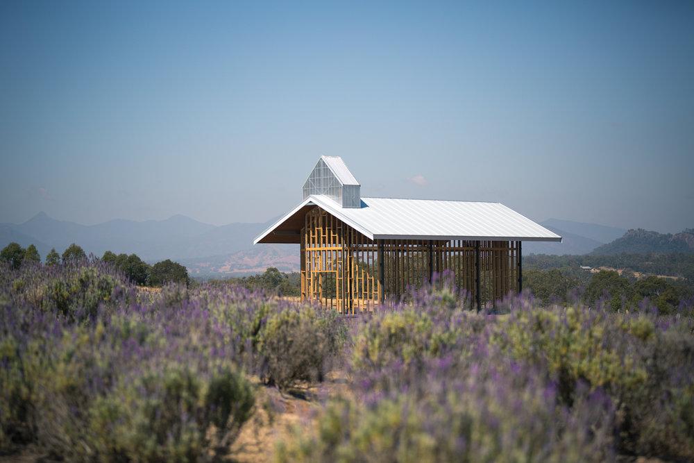 Kooroomba Vinyards and Lavender Farm