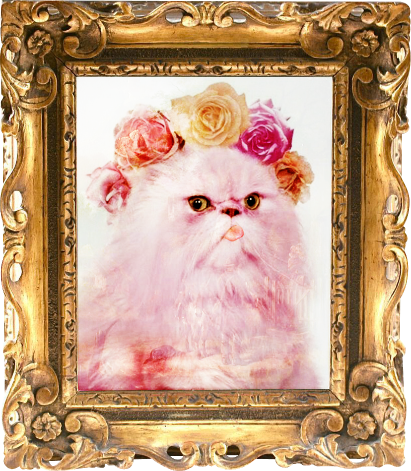Purrty in Pink  Fluffy Antoinette  [Let them LICK cake!] :<p